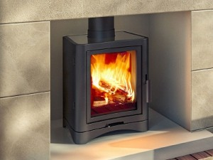 Wood Burning Broseley Evolution Stove